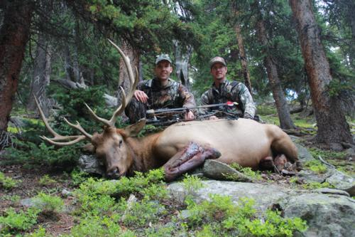 Colorado Elk Hunting - When to hunt in Archery Season