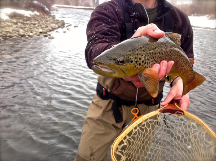 Page 4 4 fly fishing trips for Best fly fishing in colorado
