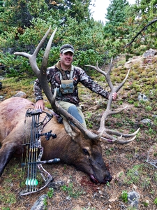 What a huge 6x7 bull elk ... congrats Scott!