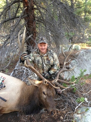 Colorado Archery Elk Hunting | Guided, Semi-Guided, Non